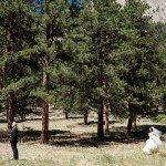 Webb Roudebush Steve Stanton Photography ssproudebush120 A 150x150 Wedding and Event Planners