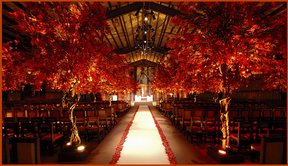 Colorado Autumn Wedding Ceremony