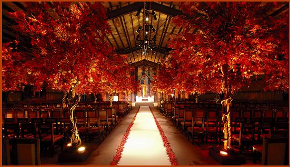 Colorado Autumn Wedding Ceremony