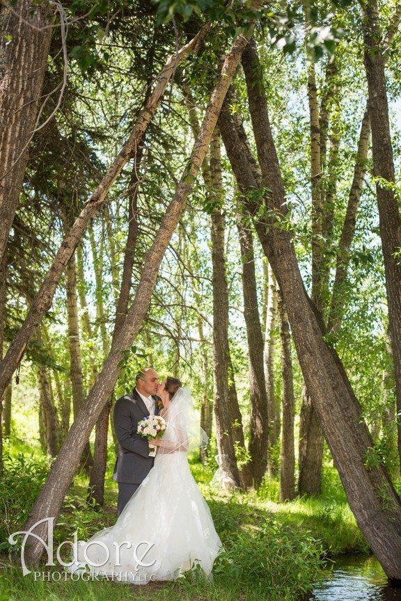 Colorado Destination Wedding In Estes Park